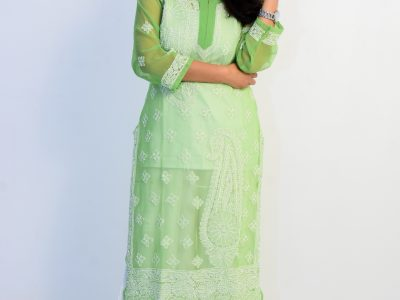 Buy Lucknowi Chikan Light Green and White Georgett